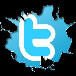 """""""twitter logo"""""""