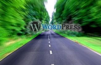 """Wordpress SEO tips"""